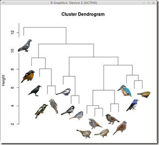 cluster_dendrogram_bird_thumb1